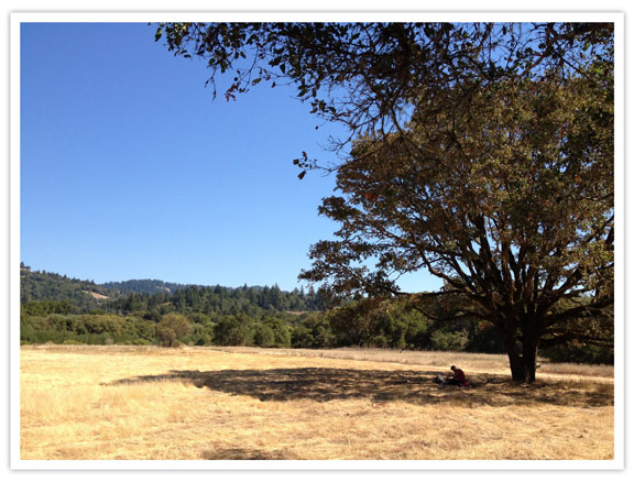 lacasserolechaude_Boonville_California-8