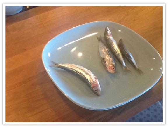 la-casserole-chaude-Grece-Corfu-Spartillas-pieuvre-grillée-9